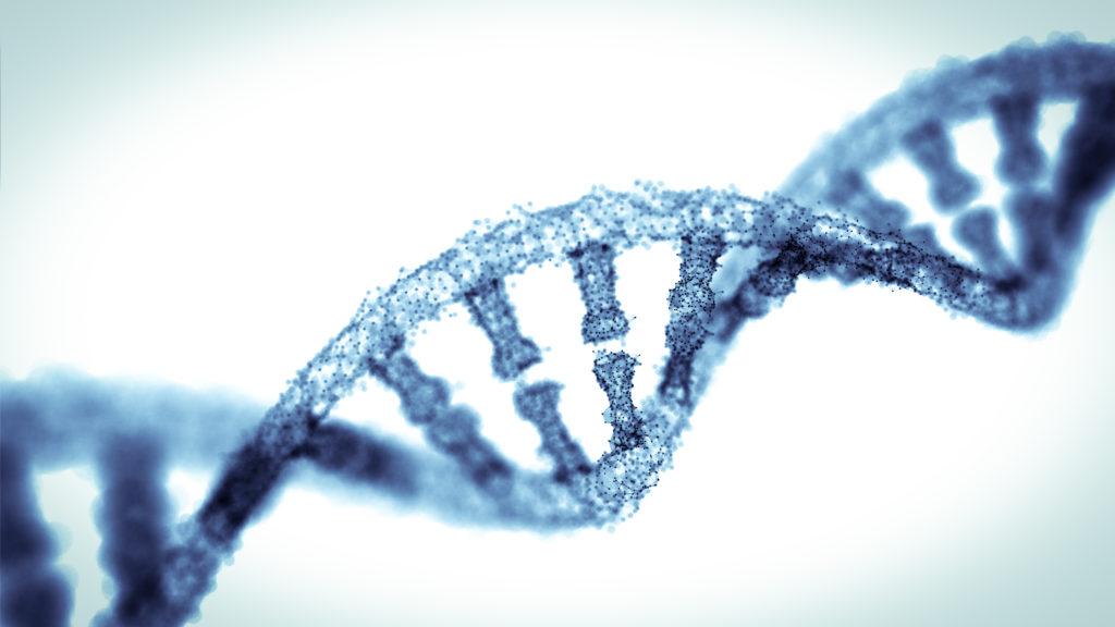 RNA helix