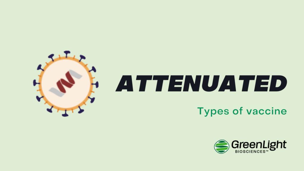 Attenuated vaccine