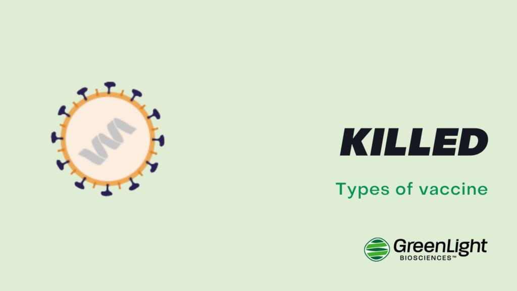 Killed vaccine
