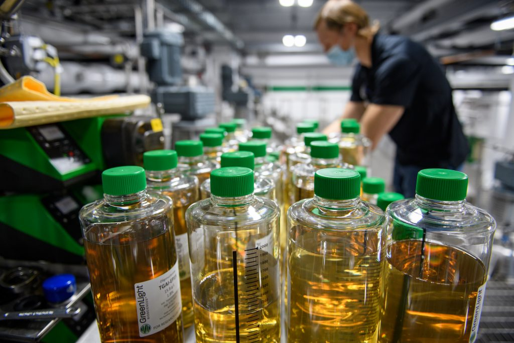Rows of clear bottles filled with formulations at GreenLight's Rochester manufacturing facility.